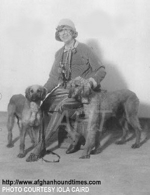 http://www.afghanhoundtimes.com - James and Grace Dignowity's (Bell Murray) Afghan Hounds WKC 1927