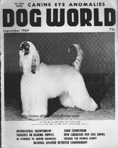 Dog World Afghan Hound Cover 1970
