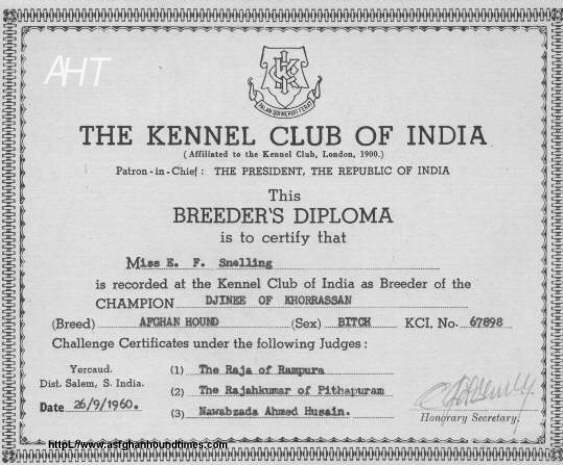Afghan Hound Times - Kennel Club Of India Breeders Diploma awarded to Miss Snelling in 1960