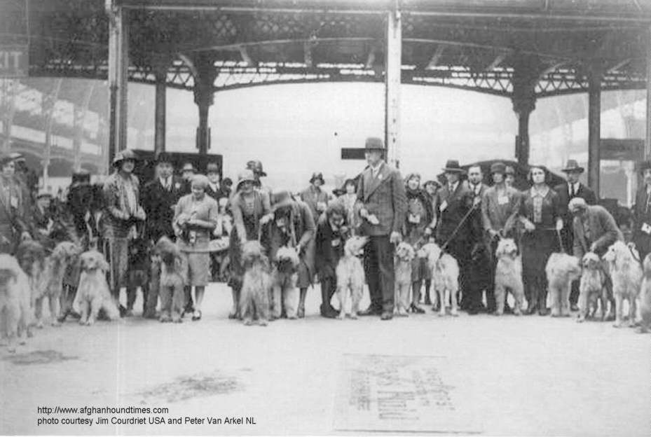 Afghan Hound Times - Han Jungling Judging in England LKA 1930