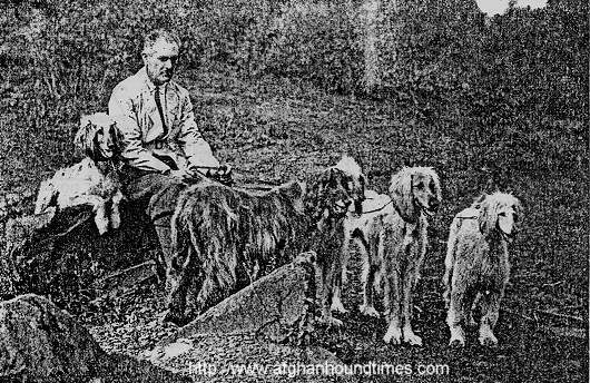 Afghan Hound Times Photo Major Bell Murray and Hounds