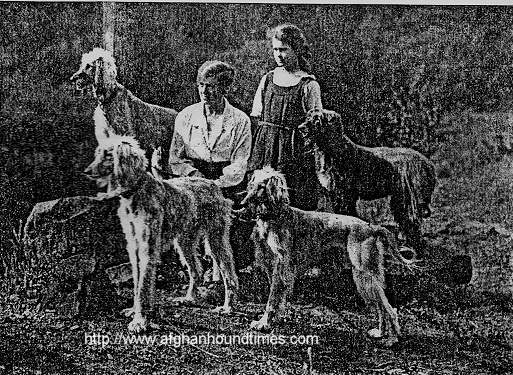 Afghan Hound Times photo Jean Manson and Afghan Hounds