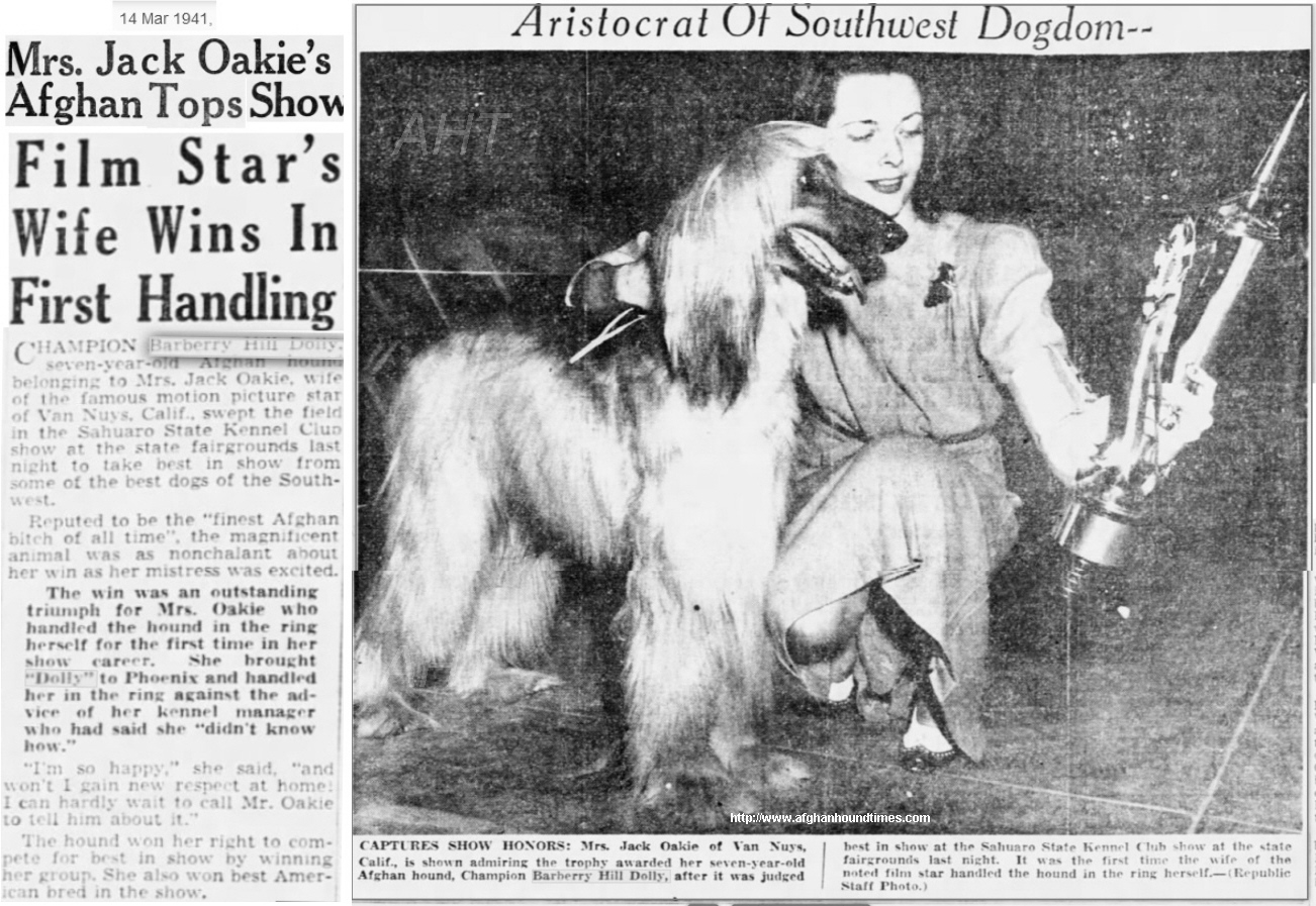 http://www.afghanhoundtimes.com  PHOTO Mrs Oakie handling Barberryhill Dolly in 1941