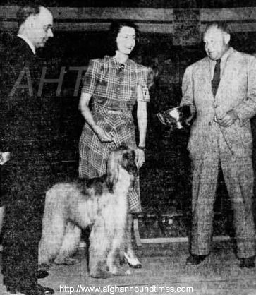 http://www.afghanhoundtimes.com PHOTO Venita Vardon Oakie handling Barberryhill Dolly 1941